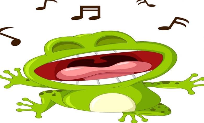 Screaming Frog SEO Denetleme