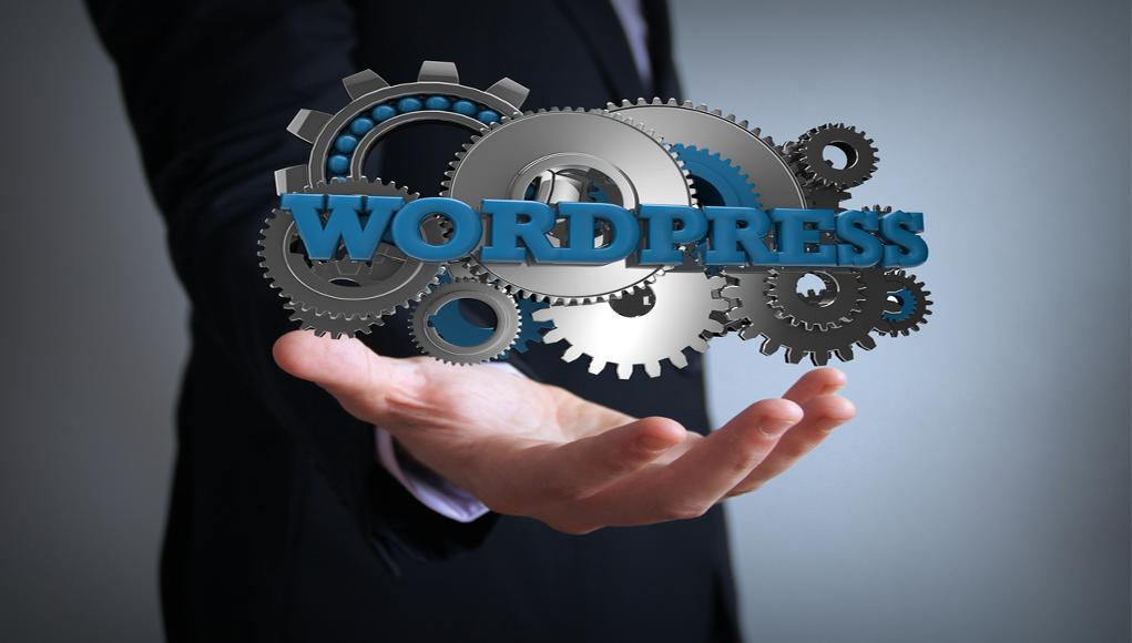 Wordpress Eklentisi Litespeed Cache